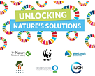 Logo for joint nature-based solutions pavilion at the 8th World Water Forum