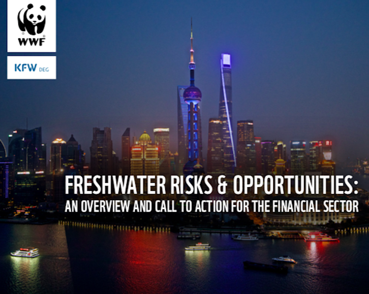 Financial sector must start valuing and responding to worsening water risks, says WWF report