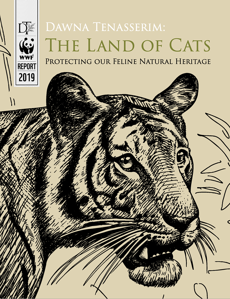 "WWF ""Land of Cats"" Report"
