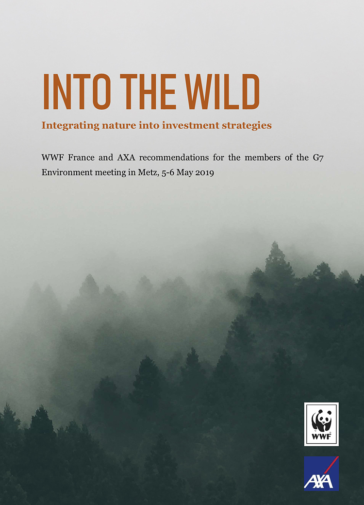 Into the Wild: integrating nature into investment strategies