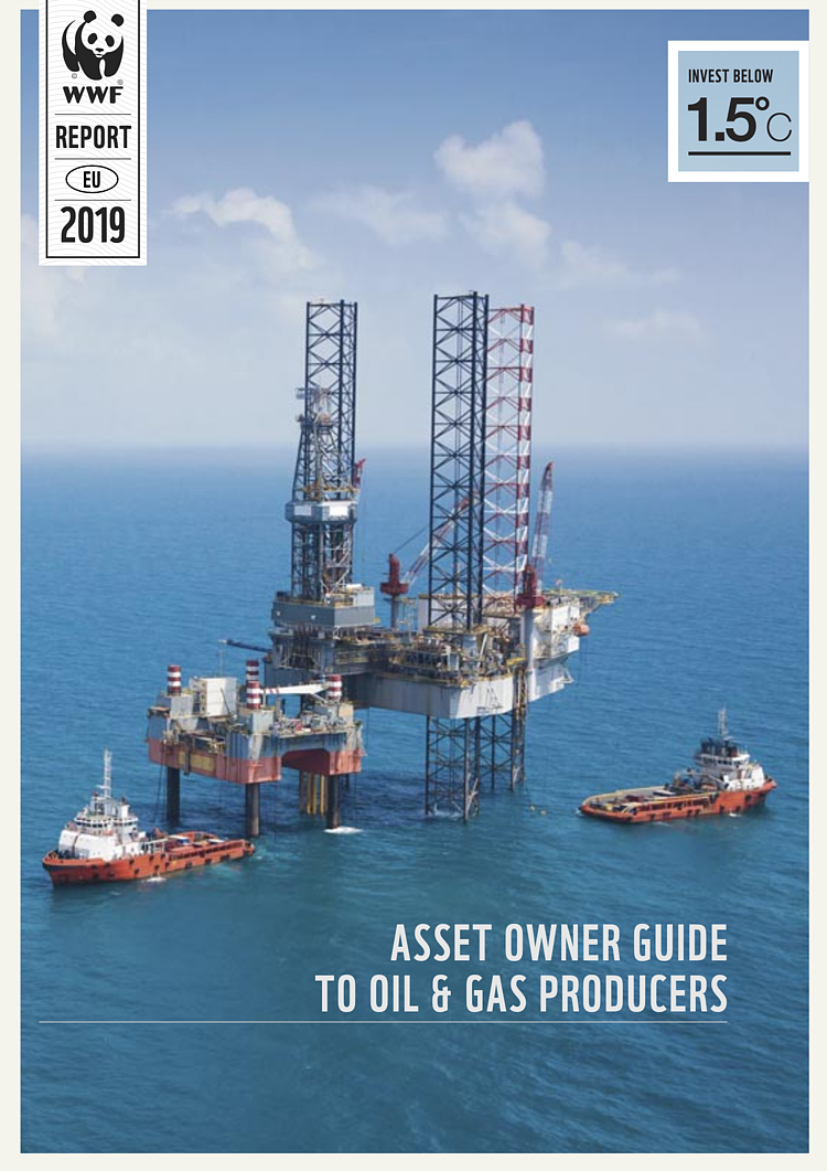 Asset Owner Guide To Oil & Gas Producers