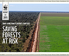 Living Forests Report Chapter 5: Saving Forests at Risk