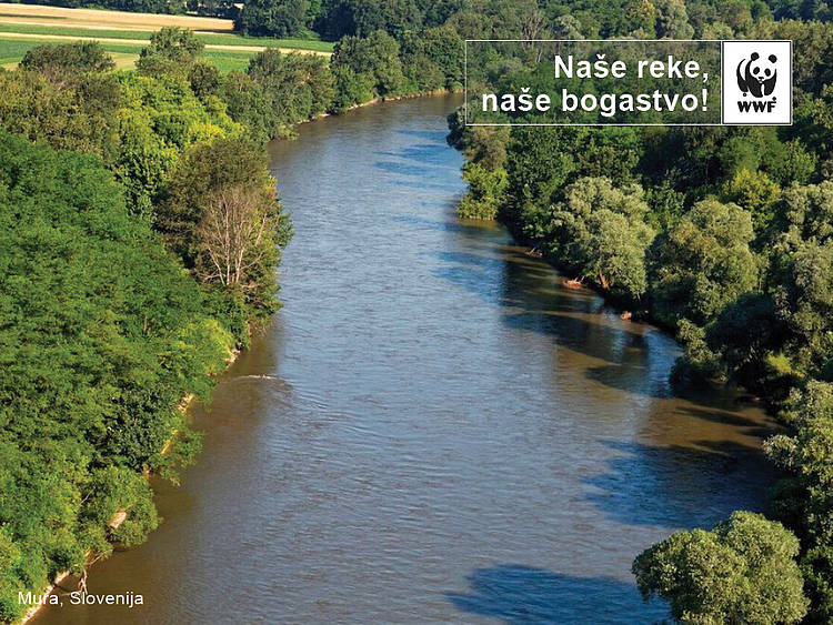 Slovenian Minister of the Environment Moves to Cancel the Eight Planned Hydroelectric Power Plants along the Mura River