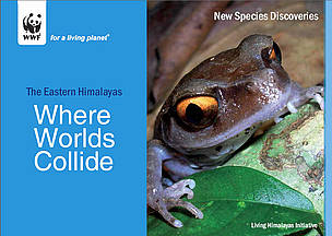 Front cover of the report  	© WWF