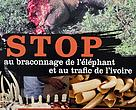 Poster: stop elephant poaching