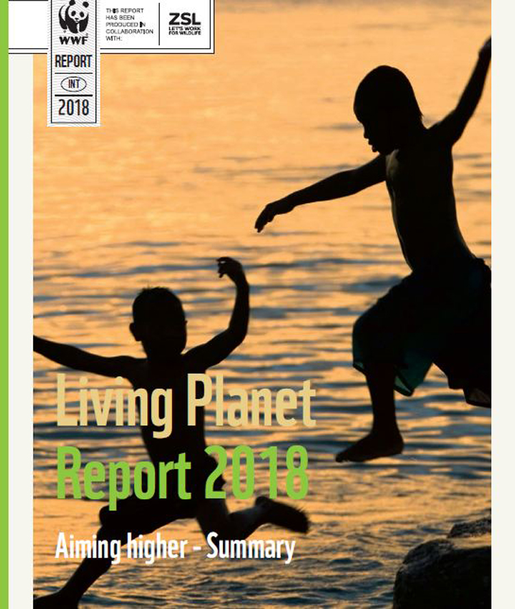 Living Planet Report 2018 - Summary