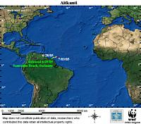 Map locator for this leatherback. Click to view an enlarged animated version. The latest positional ...  	© WWF / CCC