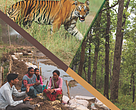 Strategy and Action Plan: 2015-2025 Terai Arc Landscape, Nepal