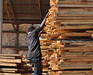 Timber in Dar es Salaam Tanzania meant for sale is stacked high as it awaits transportation to different parts of the Coastal East Africa Region.