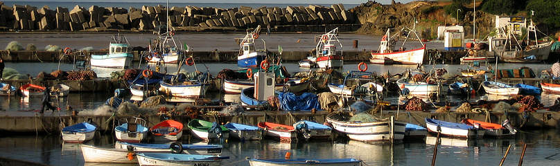 Small fishing harbour in the National Park of Taza, Algeria  	© Parc National de Taza