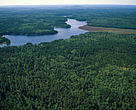 Aerial view of the northern Canadian forest.