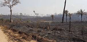 Fires intensify in the Amazon, the Chiquitanía and the Pantanal