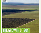 The Growth of Soy: Impacts & Solutions
