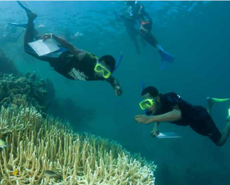 Factsheet: Developing and Promoting Sustainable Nature-based Tourism in the Coral Triangle