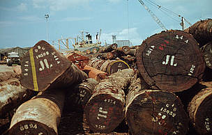 Timber awaiting export to Europe, Abidjan, Ivory Coast.