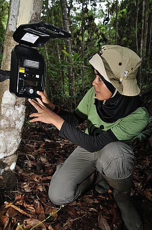 Lady sat checking a camera trap in the jungle