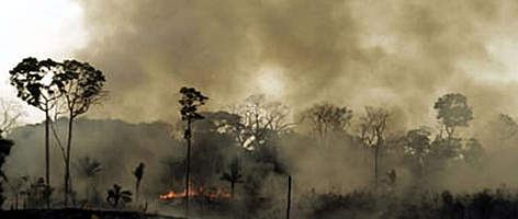 Amazonian rainforest being burnt to create pasture for ranching, Brazil. rel=