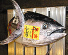 Tuna for sale at the Tokyo Fish Market, Japan