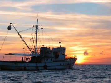 A tuna fishing vessel rel=