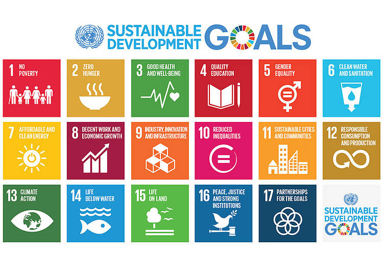 SDG policy paper - reviewing SDG targets linked to Aichi biodiversity targets