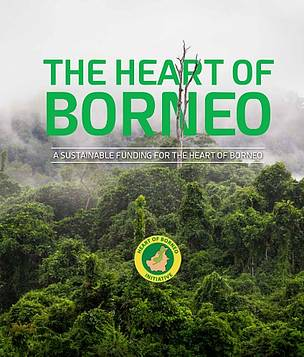 The Heart of Borneo: A Sustainable Funding for the Heart of Borneo