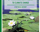 Vulnerability Assessment of the Danube Delta to Climate Change (cover).