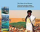 Value of our Oceans report cover