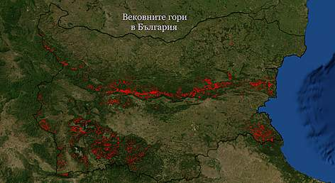 Map of old growth forests in Bulgaria rel=