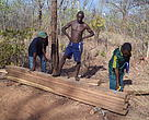 Village members of Sauti moja inspecting and measuring collected wood for communal business and benefits in Tunduru district, Southern Tanzania