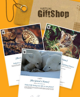 Virtual Gifts / ©: WWF