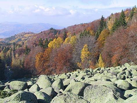 Autumn landscape from Vitosha Nature Park, Bulgaria rel=