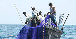 Fishermen pulling up nets, Mafia Island, part of the Mafia Marine Park which was created with the support of  WWF Tanzania.
