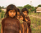 Ashaninka children in traditional clothing. Dulce Gloria, Yurua River, Ucayali Province, Peru