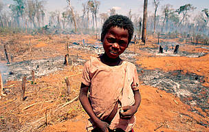 Young boy in forest burnt for cultivation. Madagascar.