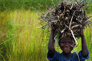A smiling boy carrying firewood for sale in the market place near the provincial capital of Goma, ...  	© Kate Holt / WWF-UK