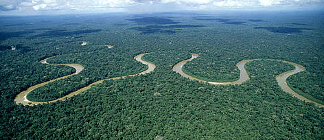 Rio Pinquen, Manu National Park, Amazon Rainforest, Peru.  rel=
