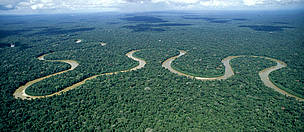 Rio Pinquen, Manu National Park, Amazon Rainforest, Peru.  / ©: WWF / André BÄRTSCHI