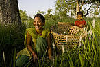 Women cutting grass in Khata, Nepal © Simon de Trey-White / WWF-UK