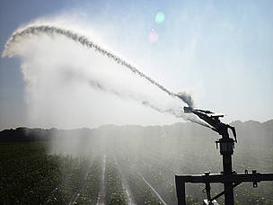 Irrigation equipment pumps water over a corn field.