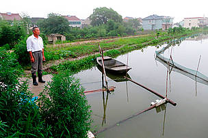 Integrated fish farming