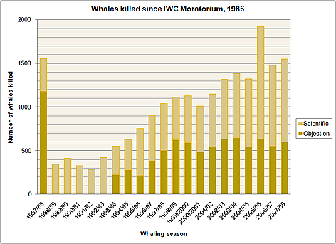 Whales killed since IWC moratorium. 1986 - 2008. rel=