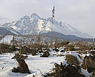 Windstorm in the Tatras National Park - November 2004