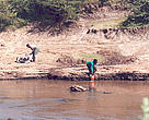 Women fetch water from the Mara River in Narok Town; WWF-EARPO/Catherine Mgendi