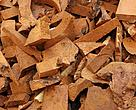 Biomass energy: Forest products such as wood chips can be used to make biomass.