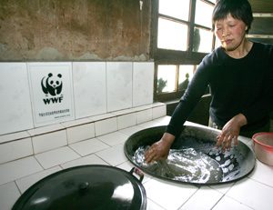 Wood saving stove. / ©: WWF China