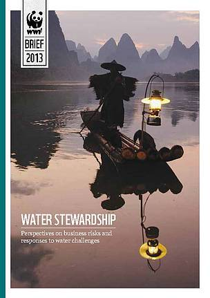 Water Stewardship: Perspectives on business risk and responses to water challenges. 2013.