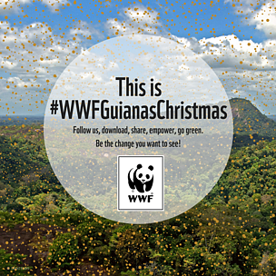 This is #WWFGuianasChristmas