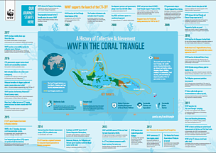 WWF in the Coral Triangle - A History of Collective Achievements