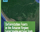 Deforestation Fronts in the Amazon Region: Current Situation and Future Trends - a preliminary summary