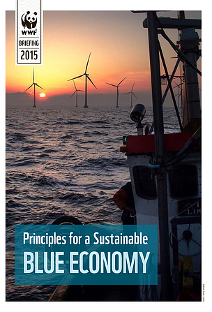 BRIEF: Principles for a Sustainable Blue Economy